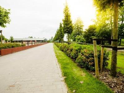 Pflanzgut Heydorn Mai-20140527-danny wandelt photographer-97